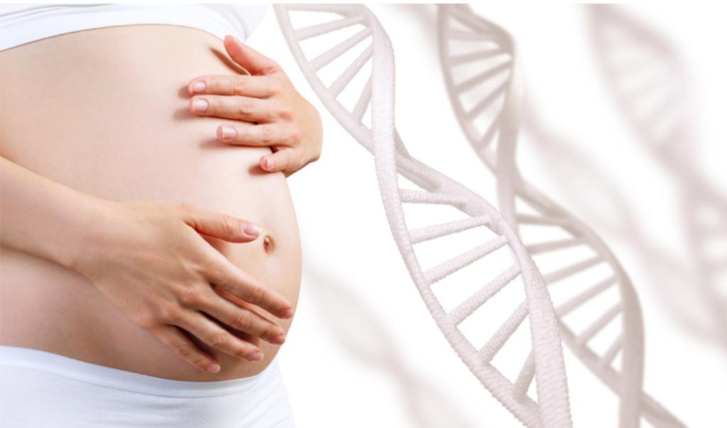 Imagem ilustrativa de uma barriga de grávida ao lado de uma figura de DNA.